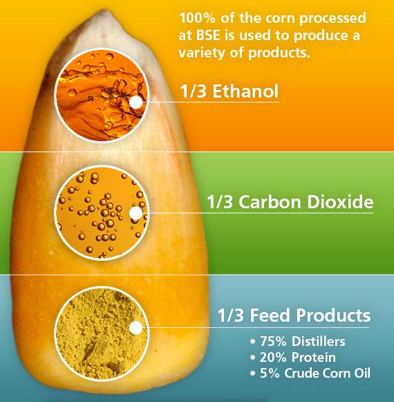 Ethanol Productivity Chart